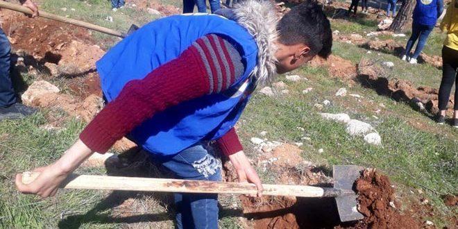شبيبة حمص تنفذ حملة تشجير في جبال الشومرية