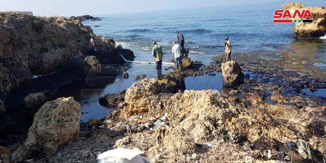 الهيئة العامة للثروة السمكية والأحياء المائية: إجراءات للحد من أضرار تسرب الفيول على سلامة الأسماك