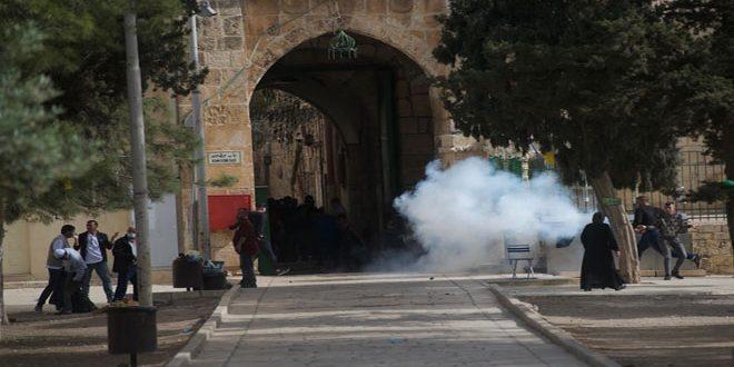 Kudüs ve El Aksa'daki İşgal Saldırılarında 300'den Fazla Yaralı